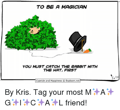 Memes, 🤖, and Magician: TO BE A MAGICIAN  YOU MUST CATCH THE RABBIT WITH  THE HAT, FIRST  Cyanide and Happiness O Explosm.net  08 By Kris. Tag your most M✨A✨G✨I✨C✨A✨L friend!