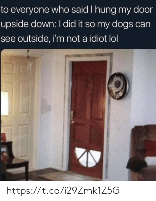 Idiot: to everyone who said I hung my door  upside down: I did it so my dogs can  see outside, i'm not a idiot lol https://t.co/i29Zmk1Z5G