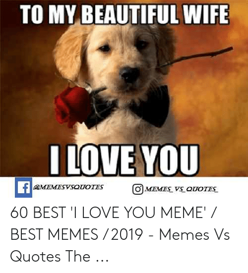 Love Wife Meme: TO MY BEAUTIFUL WIFE  ILOVE YOU  O MEMES VS QUOTES 60 BEST 'I LOVE YOU MEME' / BEST MEMES / 2019 - Memes Vs Quotes The ...
