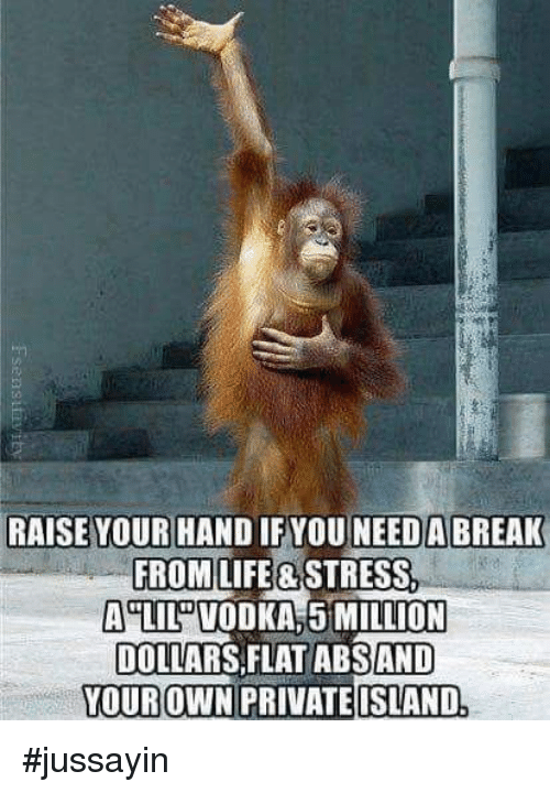 """Dank, Life, and Break: to  RAISE YOUR HAND IF YOU NEED A BREAK  FROM LIFE& STRESS  A""""LILDVODKA 5MILLION  DOLLARS FLAT ABSAND  OUROWN PRIVATEISLAND #jussayin"""