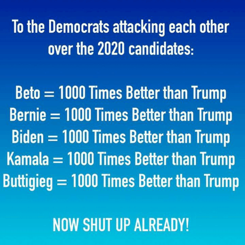 kamala: To the Democrats attacking each other  over the 2020 candidates:  Beto 1000 Times Better than Trump  Bernie = 1000 Times Better than Trump  Biden 1000 Times Better than Trump  Kamala = 1000 Times Better than Trump  Buttigieg = 1000 Times Better than Trump  NOW SHUT UP ALREADY