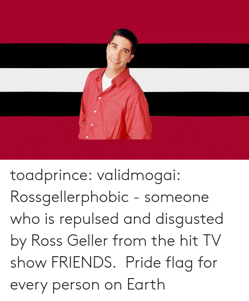 Friends, Ross Geller, and Target: toadprince: validmogai: Rossgellerphobic - someone who is repulsed and disgusted by Ross Geller from the hit TV show FRIENDS.  Pride flag for every person on Earth