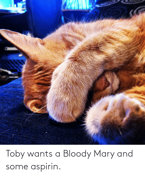 Bloody Mary: Toby wants a Bloody Mary and some aspirin.