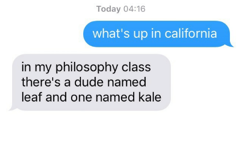 Dude, California, and Kale: Today 04:16  what's up in california  in my philosophy class  there's a dude named  leaf and one named kale
