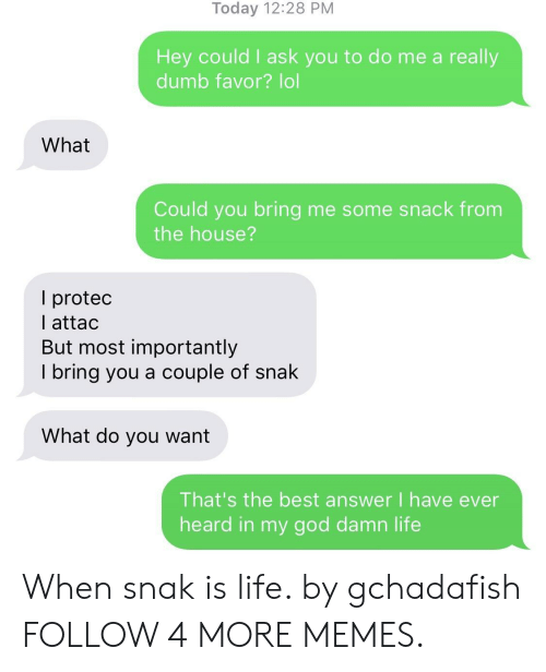 I Ask You: Today 12:28 PM  Hey could I ask you to do me a really  dumb favor? lol  What  Could you bring me some snack from  the house?  I protec  I attac  But most importantly  I bring you a couple of snak  What do you want  That's the best answer I have ever  heard in my god damn life When snak is life. by gchadafish FOLLOW 4 MORE MEMES.