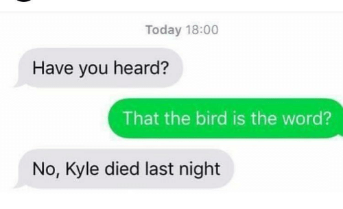 Today, Word, and Last Night: Today 18:00  Have you heard?  That the bird is the word?  No, Kyle died last night
