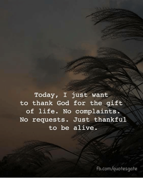 Alive, God, and Life: Today, I just want  to thank God for the gift  of life. No complaints.  No requests. Just thankful  to be alive.  fb.com/quotesgate