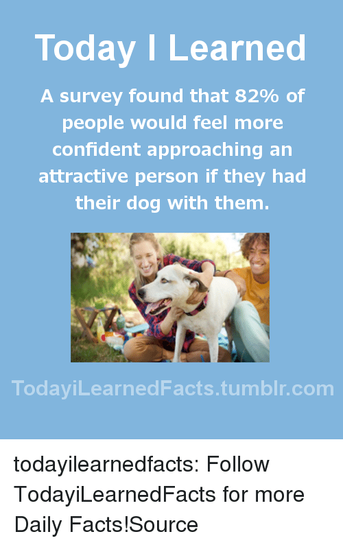 labrador: Today I Learned  A survey found that 82% of  people would feel more  confident approaching an  attractive person if they had  their dog with them.  TodaviLearned Facts.tumblr.com todayilearnedfacts:  Follow TodayiLearnedFacts for more Daily Facts!Source