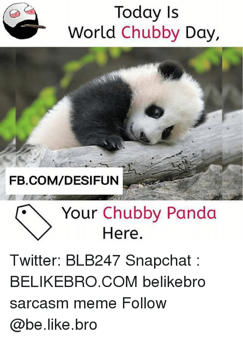 Be Like, Meme, and Memes: Today Is  World Chubby Day,  FB.COM/DESIFUN  Your Chubby Panda  Here. Twitter: BLB247 Snapchat : BELIKEBRO.COM belikebro sarcasm meme Follow @be.like.bro