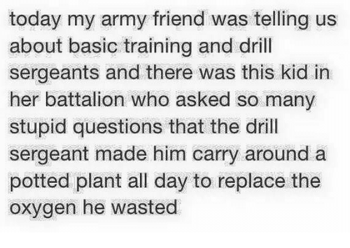 Basic Training: today my army friend was telling us  about basic training and drill  sergeants and there was this kid in  her battalion who asked so many  stupid questions that the drill  sergeant made him carry around a  potted plant all day to replace the  oxygen he wasted