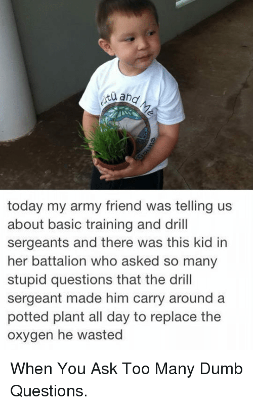 Basic Training: today my army friend was telling us  about basic training and drill  sergeants and there was this kid in  her battalion who asked so many  stupid questions that the drill  sergeant made him carry around a  potted plant all day to replace the  oxygen he wasted <p>When You Ask Too Many Dumb Questions.</p>