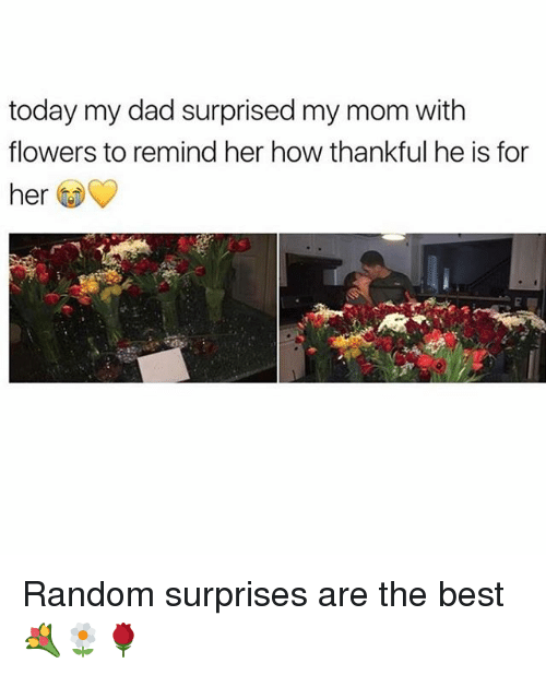 Dad, Memes, and Best: today my dad surprised my mom with  flowers to remind her how thankful he is for  her Random surprises are the best 💐🌼🌹