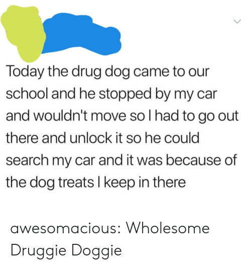 Keep In: Today the drug dog came to our  school and he stopped by my car  and wouldn't move so I had to go out  there and unlock it so he could  search my car and it was because of  the dog treats I keep in there awesomacious:  Wholesome Druggie Doggie
