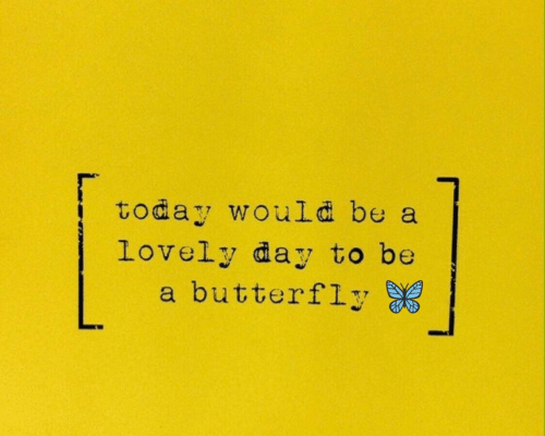 Butterfly, Today, and Day: today would be a  Lovely day to be  a butterfly