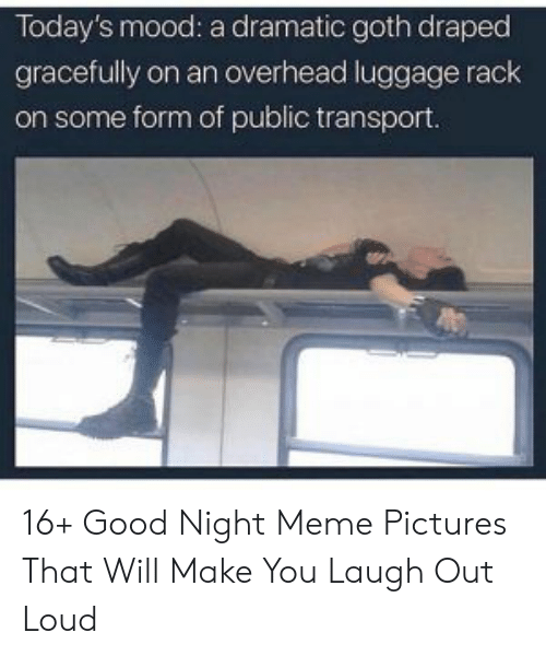 Meme, Mood, and Good: Today's mood: a dramatic goth draped  gracefully on an overhead luggage rack  on some form of public transport. 16+ Good Night Meme Pictures That Will Make You Laugh Out Loud