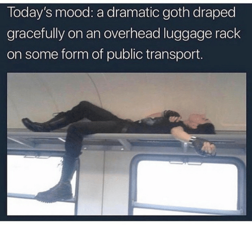 Mood, Luggage, and Goth: Today's mood: a dramatic goth draped  gracefully on an overhead luggage rack  on some form of public transport.