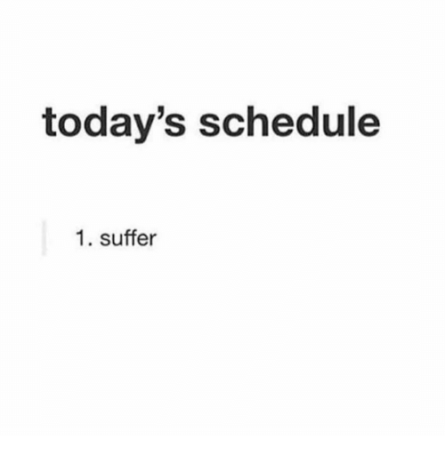 Dank, Schedule, and 🤖: today's schedule  1. suffer