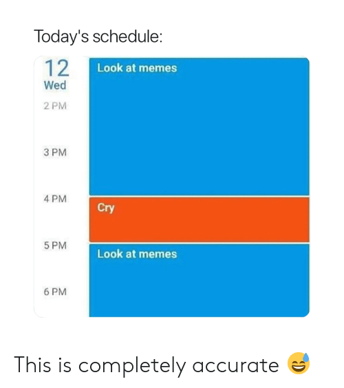 Memes, Schedule, and Cry: Today's schedule:  12  Look at memes  Wed  2 PM  3 PM  4 PM  Cry  5 PM  Look at memes  6 PM This is completely accurate 😅
