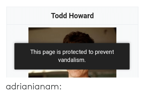 vandalism: Todd Howard  This page is protected to prevent  vandalism adrianianam:
