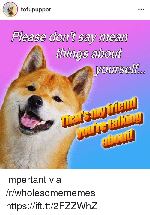 Mean, Via, and Don: tofupupper  Please don t say mean  things about  yourself  friel  ho impertant via /r/wholesomememes https://ift.tt/2FZZWhZ