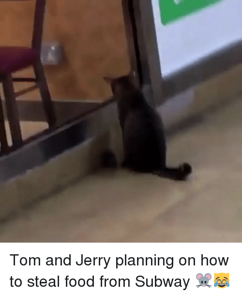 How To Steal: Tom and Jerry planning on how to steal food from Subway 🐭😹