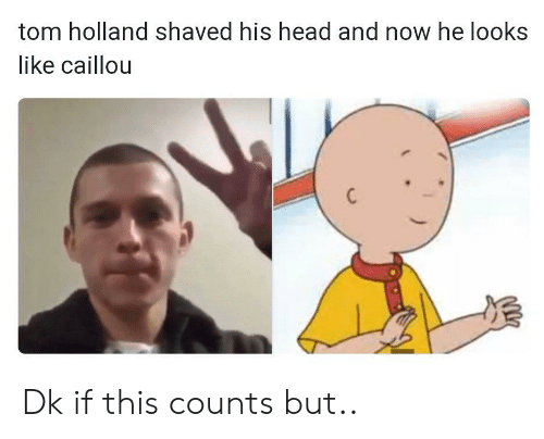 holland: tom holland shaved his head and now he looks  like caillou Dk if this counts but..