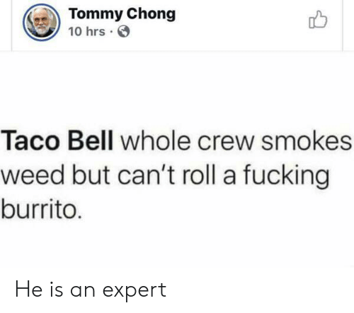 tommy: Tommy Chong  10 hrs  Taco Bell whole crew smokes  weed but can't roll a fucking  burrito. He is an expert