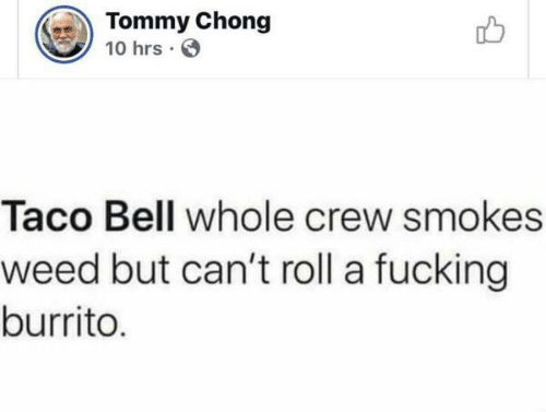 tommy: Tommy Chong  10 hrs  Taco Bell whole crew smokes  weed but can't roll a fucking  burrito.