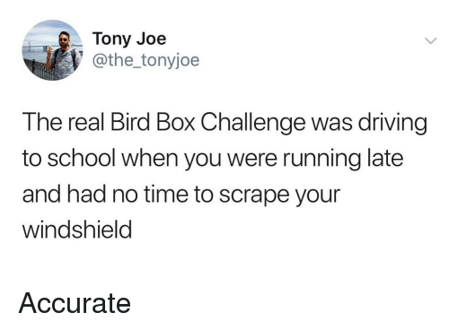 windshield: Tony Joe  @the_tonyjoe  The real Bird Box Challenge was driving  to school when you were running late  and had no time to scrape your  windshield Accurate
