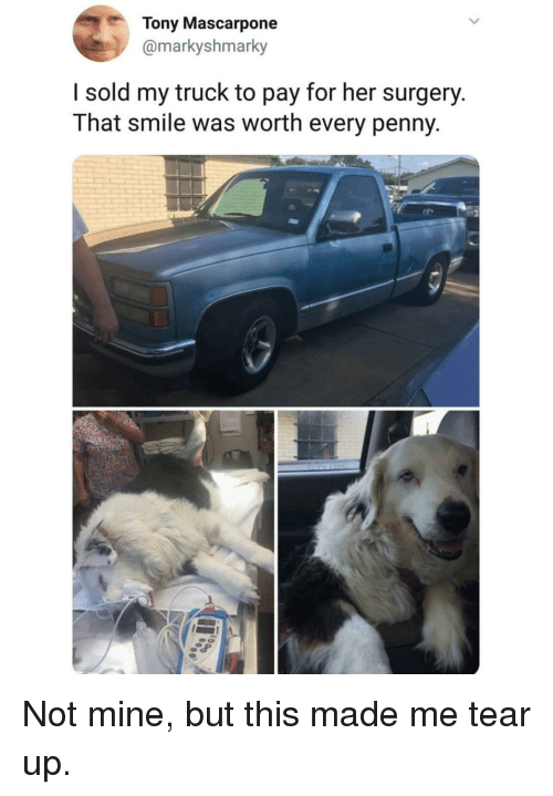 Smile, Her, and Mine: Tony Mascarpone  @markyshmarky  I sold my truck to pay for her surgery.  That smile was worth every penny Not mine, but this made me tear up.
