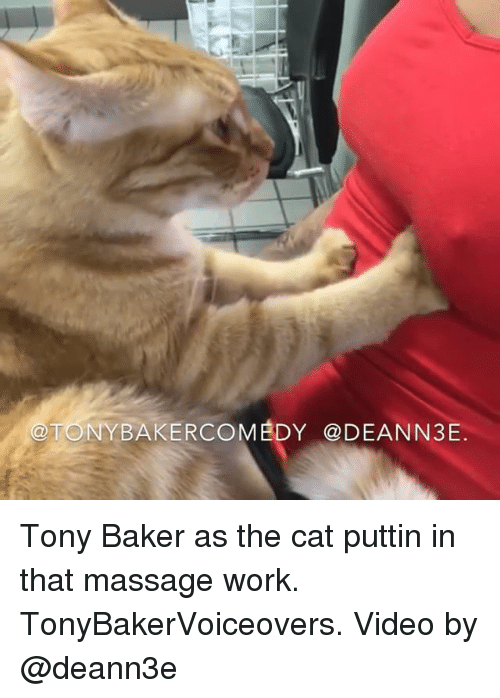 massaging: @TONYBAKERCOMEDY @DEANN3E Tony Baker as the cat puttin in that massage work. TonyBakerVoiceovers. Video by @deann3e