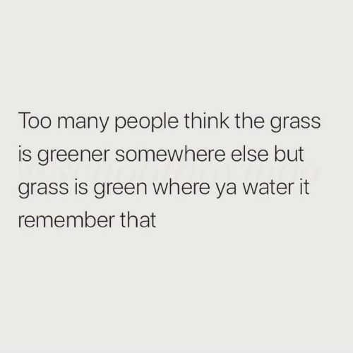 Water, Green, and Grass: Too many people think the grass  is greener somewhere else but  grass is green where ya water it  remember that