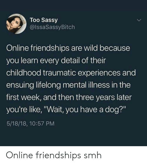 """Smh, Wild, and Sassy: Too Sassy  @lssaSassyBitch  Online friendships are wild because  you learn every detail of their  childhood traumatic experiences and  ensuing lifelong mental illness in the  first week, and then three years later  you're like, """"Wait, you have a dog?""""  5/18/18, 10:57 PM Online friendships smh"""
