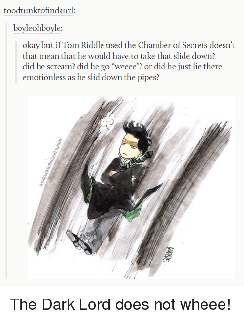 "He Scream: toodrunktofindaurl:  boyleohboyle  okay but if Tom Riddle used the Chamber of Secrets doesn't  that mean that he would have to take that slide down?  did he scream? did he go ""weeee""? or did he just lie there  emotionless as he slid down the pipes? The Dark Lord does not wheee!"