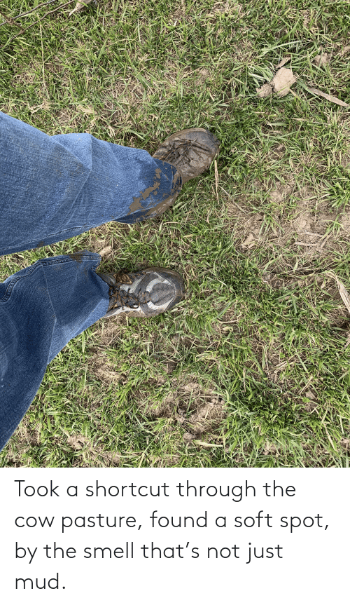 mud: Took a shortcut through the cow pasture, found a soft spot, by the smell that's not just mud.
