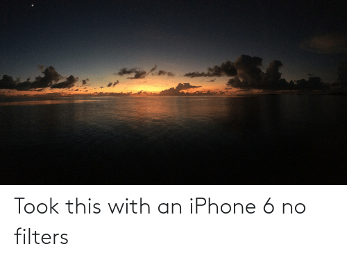 Iphone 6: Took this with an iPhone 6 no filters