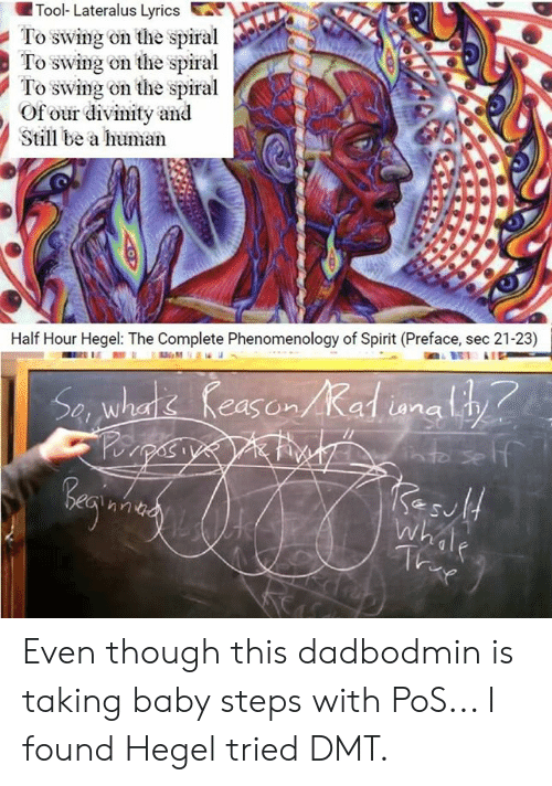 🐣 25+ Best Memes About Tool Lateralus   Tool Lateralus Memes