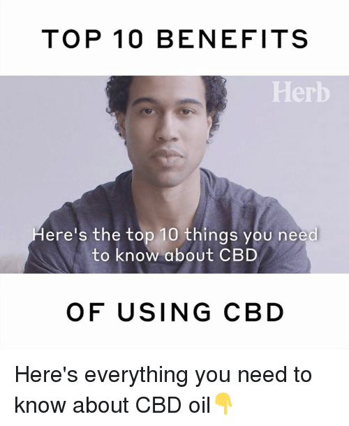 herb: TOP 10 BENEFITS  Herb  ere's the top 10 things you need  to know about CBD  OF USING CBD Here's everything you need to know about CBD oil👇