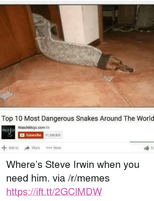 """Memes, Steve Irwin, and Snakes: Top 10 Most Dangerous Snakes Around The World  WatchMojo.coma  C Subecrbe  1.339 820  + Add to  Share.More <p>Where's Steve Irwin when you need him. via /r/memes <a href=""""https://ift.tt/2GClMDW"""">https://ift.tt/2GClMDW</a></p>"""