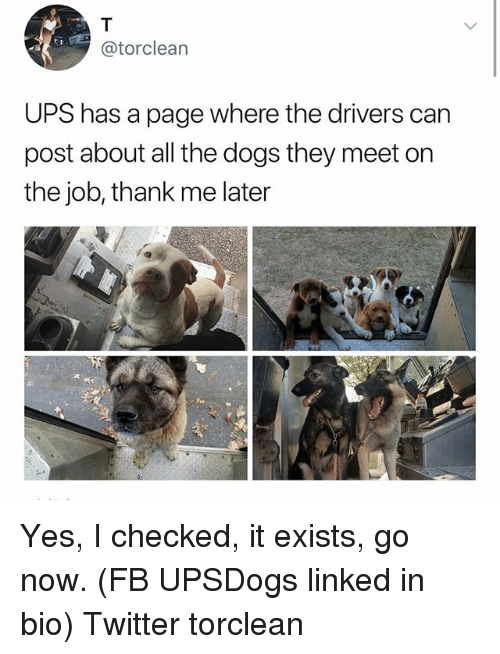 linked in: @torclean  UPS has a page where the drivers can  post about all the dogs they meet on  the job, thank me later Yes, I checked, it exists, go now. (FB UPSDogs linked in bio) Twitter torclean