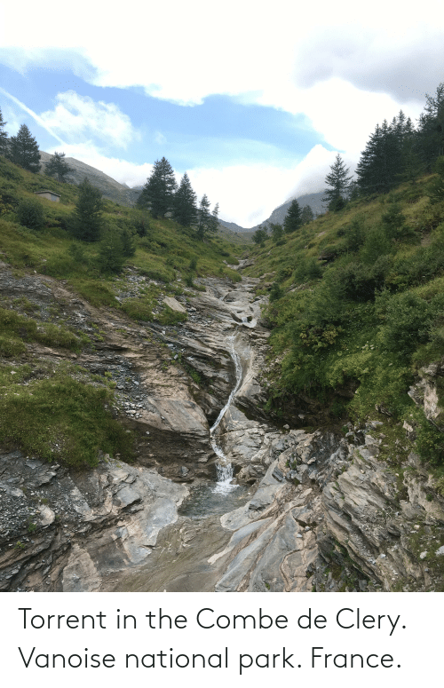 Torrent: Torrent in the Combe de Clery. Vanoise national park. France.