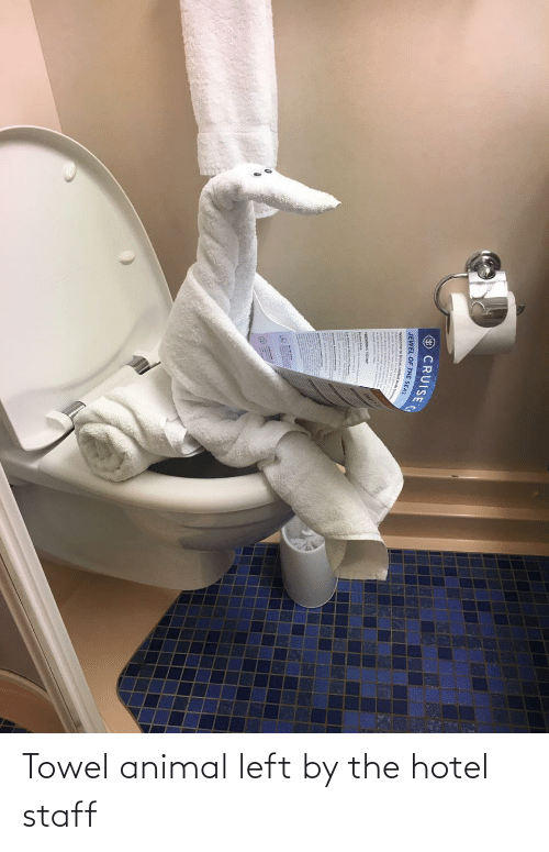 towel: Towel animal left by the hotel staff