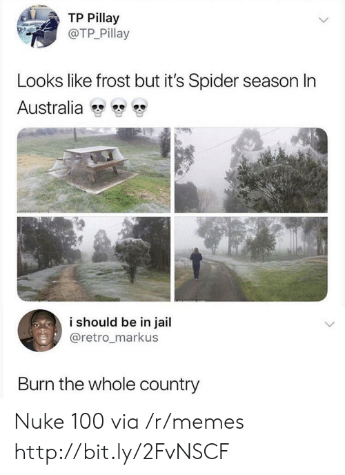 nuke: TP Pillay  @TP Pillay  Looks like frost but it's Spider season In  Australia  i should be in jail  @retro_markus  Burn the whole country Nuke 100 via /r/memes http://bit.ly/2FvNSCF