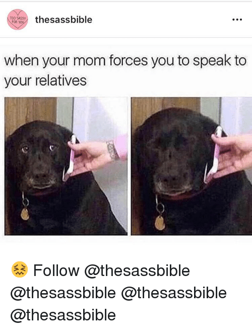 Memes, Mom, and 🤖: TPOR WSY thesassbible  when your mom forces you to speak to  your relatives 😖 Follow @thesassbible @thesassbible @thesassbible @thesassbible