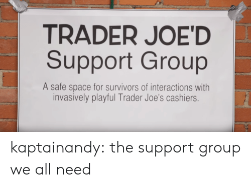 Target, Tumblr, and youtube.com: TRADER JOE'D  Support Group  A safe space for survivors of interactions with  invasively playful Trader Joe's cashiers. kaptainandy:  the support group we all need