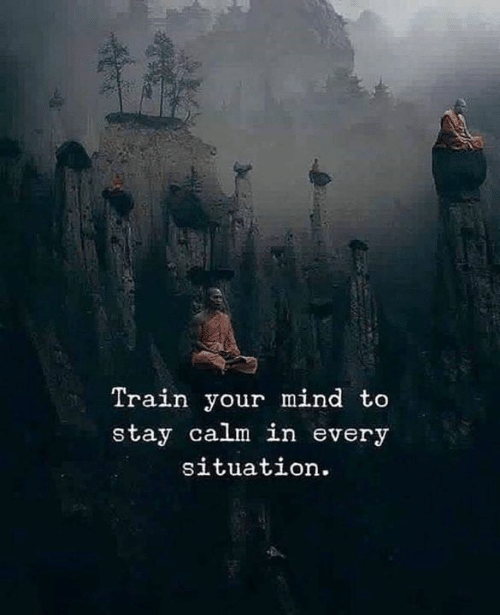 Train, Mind, and Stay: Train your mind to  stay calm in every  situation.