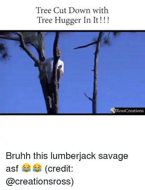 lumberjack: Tree Cut Down with  Tree Hugger In It!!!  RossCreations Bruhh this lumberjack savage asf 😂😂 (credit: @creationsross)