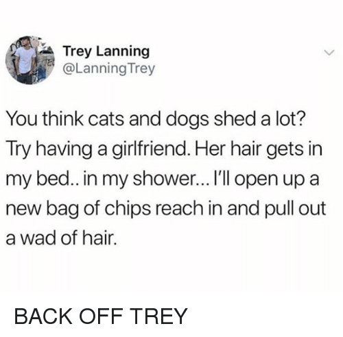 Cats, Dogs, and Shower: Trey Lanning  @Lanning Trey  You think cats and dogs shed a lot?  Try having a girlfriend. Her hair gets in  my bed.. in my shower... I'll open up a  new bag of chips reach in and pull out  a wad of hair. BACK OFF TREY