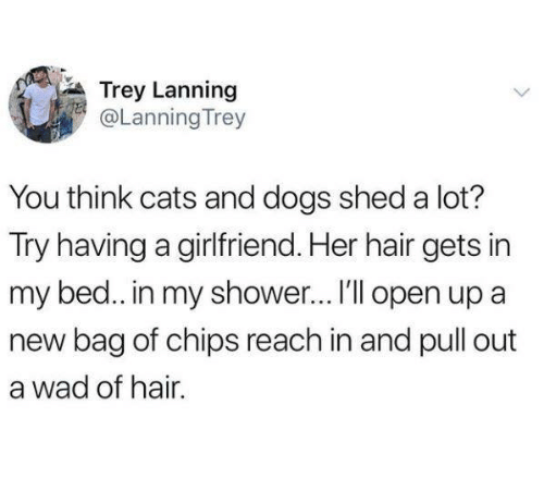 Cats, Dogs, and Shower: Trey Lanning  @Lanning Trey  You think cats and dogs shed a lot?  Try having a girlfriend. Her hair gets in  my bed.. in my shower...I'Il open up a  new bag of chips reach in and pull out  a wad of hair.