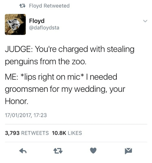 """Groomsmen: tRFloyd Retweeted  Floyd  @dafloydsta  JUDGE: You're charged with stealing  penguins from the zoo.  ME: 치ips right on mic"""" I needed  groomsmen for my wedding, your  Honor.  17/01/2017, 17:23  3,793 RETWEETS 10.8K LIKES"""